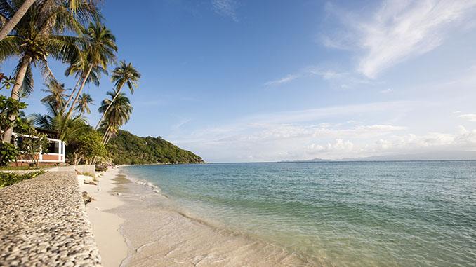 thailand beach and palm trees